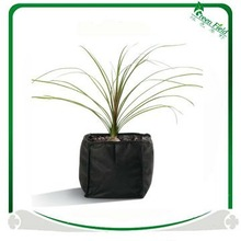 Black Fabric Plant Bags