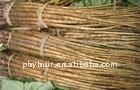manufacture supply high quality Burdock Root Extract(P)
