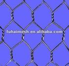 Hot-dipped galvanized Electro galvanized before weaving PVC-coated Hexagonal chicken mesh