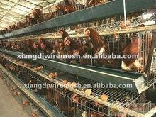 breeding chicken cage (manufacture )