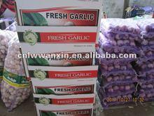 Laiwu City of Garlic