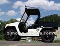 véhicule utilitaire 800cc diesel