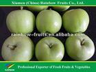 Fresh Granny Smith/ Green Apple