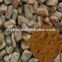 common fenugreek seed extract powder