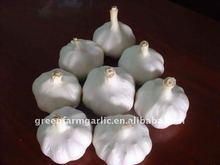 Chinese Fresh White Garlic for 2012