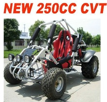 250CC GO KART WITH OFF ROAD TYRE(MC-462)