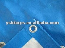 BLUE WHITE WATERPROOF PE TARPAULIN FOR TENT/AWNING