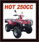 EEC 250CC QUAD ATV(MC-363)
