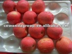 Chinese yantai Fuji Apple, Carton Package, New Crop