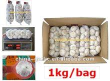 fresh garlic specification (4.5cm- 6.5cm)