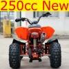 250cc cool quad atv racing atv