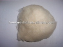 100% washed and dehaired light grey ivory cashmere fiber
