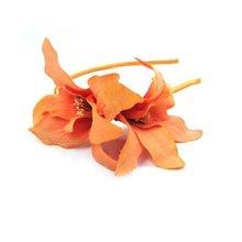 orange lily alice