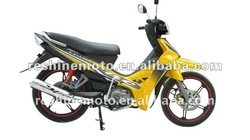 Sirius 110cc mini dirtbikes made in China