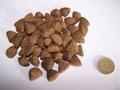الطاردالكلب/ إنتاج أغذية الحيوانات الأليفة/ صنع/ تجهيز آلة/ خط/ معدات/ آلات