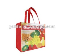 New product 2012 nonwoven supermarket bag PET nonwoven bag non woven bag