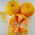 Chinese Fresh Mandarin Orange Citrus Fruit