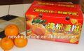 Miel fresca mandarina Citrus Fruit