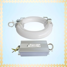 2012 Newest R-type Inducstion Lamps 40W-300W save energy lighting