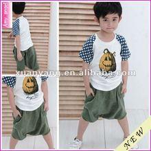 2012 hot hot cotton children cartoon boys clothing sets