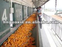 Angle belt corn conveyor hot sales like cakes/0086-15038257653