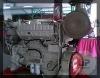 CCEC MARINE ENGINE NTA855-M350