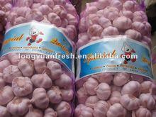 chinese fresh pink garlic