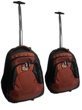Fashional Sport Series Aluminum Trolley Backpack