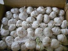chinese natural garlic 2012