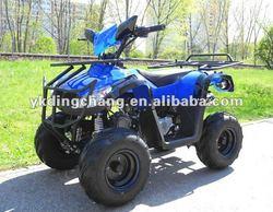 110cc,125cc ATV/QUAD