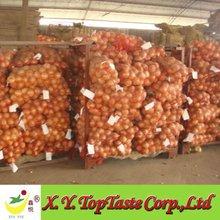 2012 fresh onion factory supply