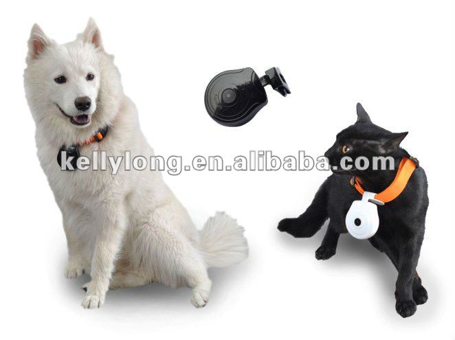 New Popular Mini LCD dog camera