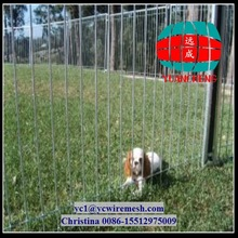 Permanent Dog enclosures with access gates