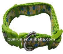 Cloth-stick dog collar with buckle