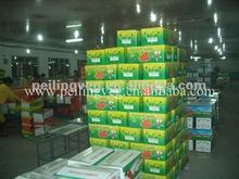 Shandong Farm Carrots price(150-200g)