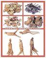 Lista cinese della medicina di erbe