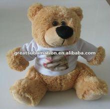 Teddy Bear with a blank poly T shirt