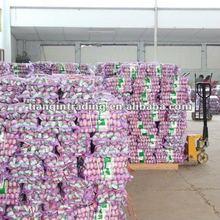 fresh jinxiang garlic producer factory