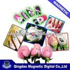 MINI DIY digital flower & nail art printer