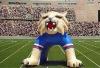 inflatable mascot monsterwolf helmet tunnelFTT1023