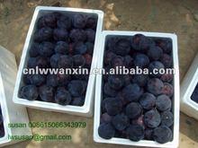 china dark plum 4.5kg carton pack 2012 new season