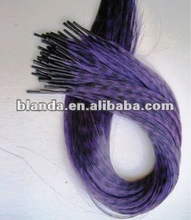 Beauty Feather Stick Hair Extension