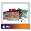 LED music bag for promotional gift