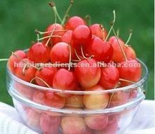natural Cherry juice powder