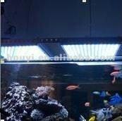 danimarca spina cree led acquario luce con telecomando a raggi infrarossi e automatico del pannello di corallo