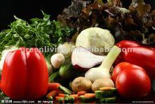 Fresh Vegetable(Garlic,ginger,onion,potato,carrot,beans)