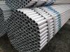Tianjin Yusheng hot dipped galvanized steel round tube