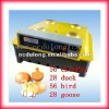 56egg holding Fully Automatic poultry chicks incubators with 2012 CE approved JN7-56