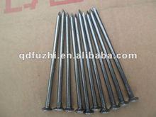 Electric Galvanized Common Wire Nails
