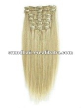 16 inch Clip-In Hair Extensions light ash blonde